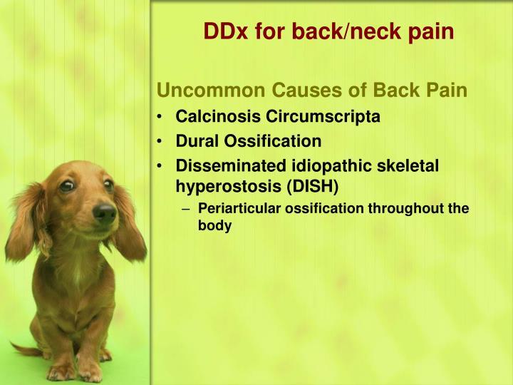 DDx for back/neck pain