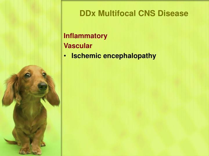DDx Multifocal CNS Disease