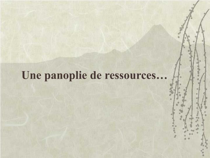 Une panoplie de ressources…