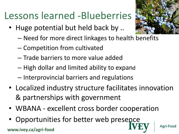 Lessons learned -Blueberries
