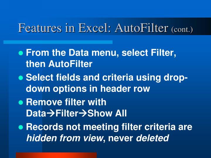 Features in Excel: AutoFilter