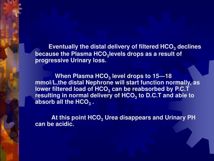 Eventually the distal delivery of filtered HCO