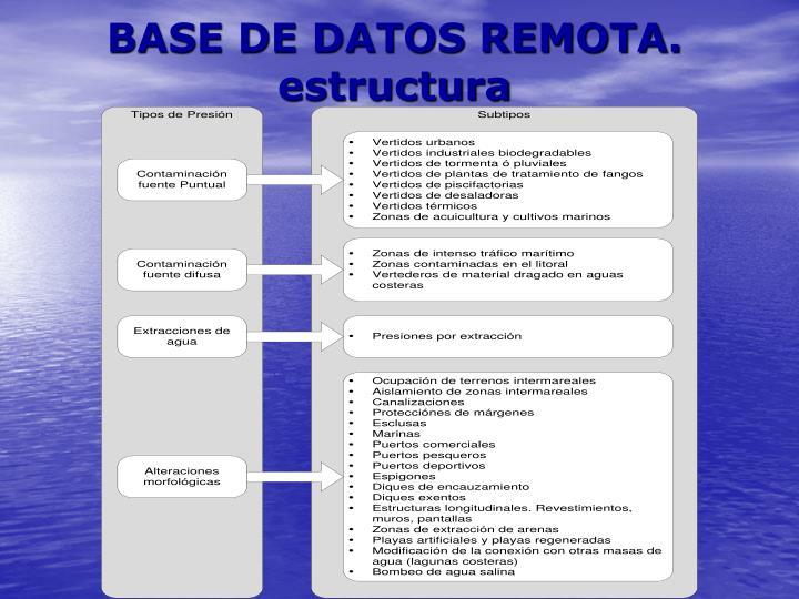 BASE DE DATOS REMOTA. estructura