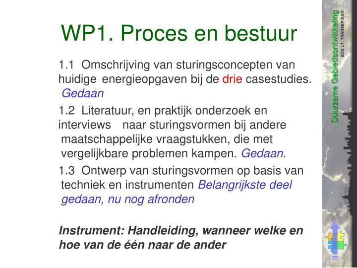 WP1. Proces en bestuur