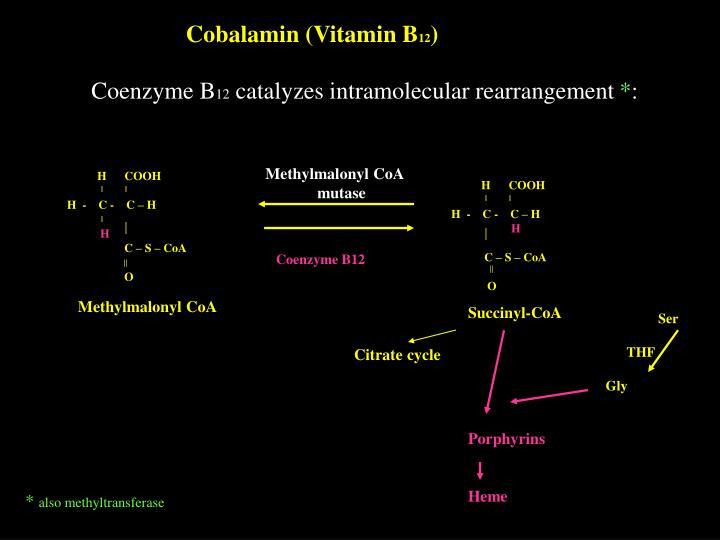 Cobalamin (Vitamin B