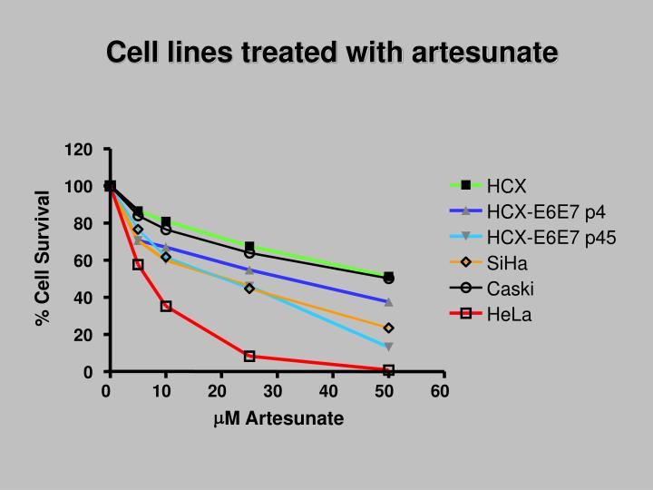 Cell lines treated with artesunate
