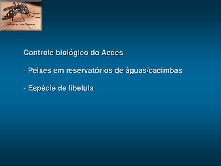 Controle biológico do Aedes