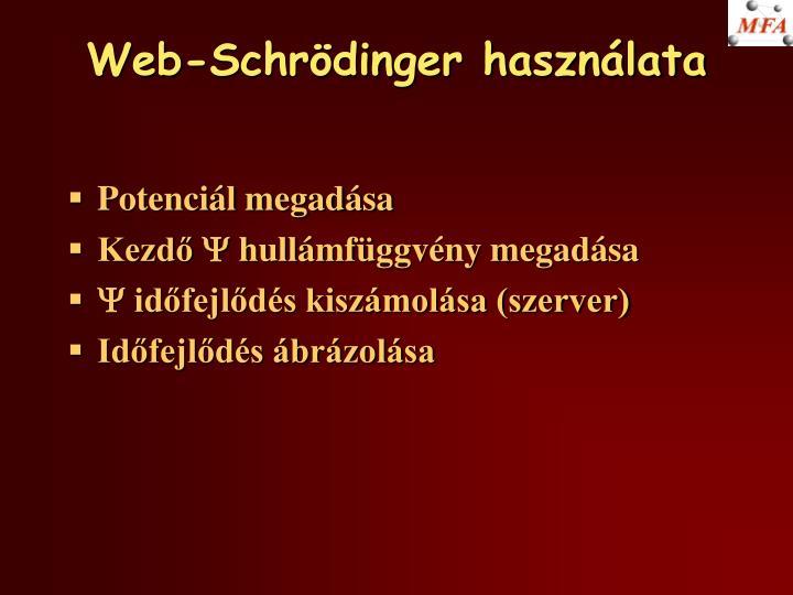 Web-Schrödinger használata