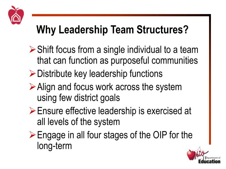 Why Leadership Team Structures?