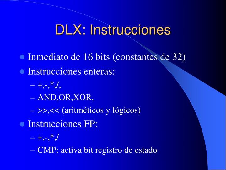 DLX: Instrucciones