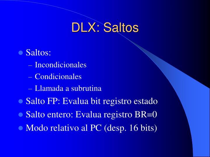 DLX: Saltos