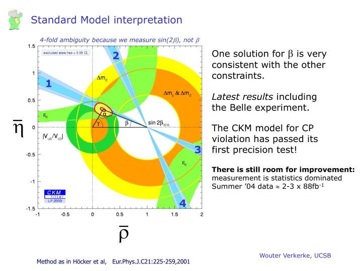 Standard Model interpretation