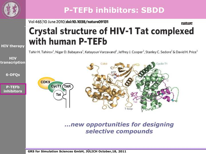 P-TEFb inhibitors: SBDD