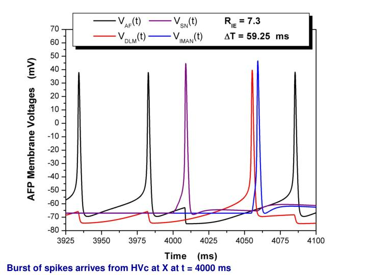 Burst of spikes arrives from HVc at X at t = 4000 ms