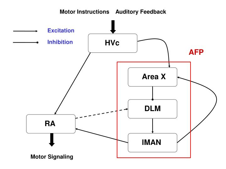 Motor Instructions    Auditory Feedback