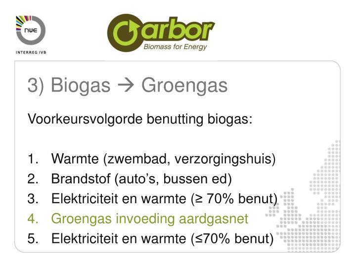 3) Biogas