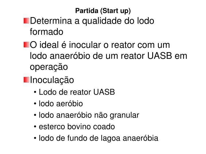 Partida (Start up)