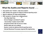 what the audits and reports found