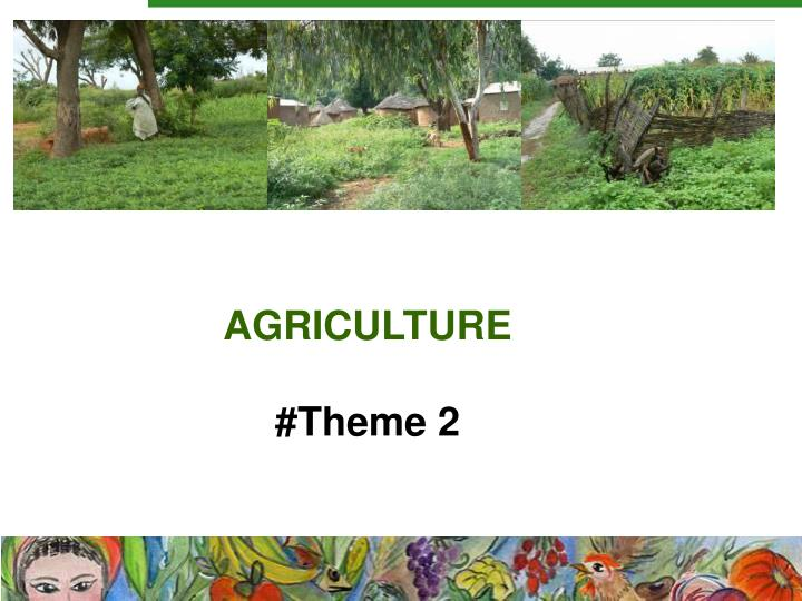 Agriculture theme 2