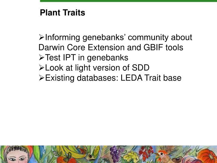 Plant Traits
