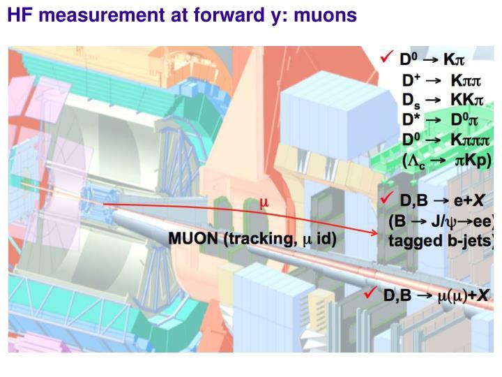 HF measurement at forward y: muons
