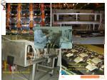 sct barrel sector in sr11