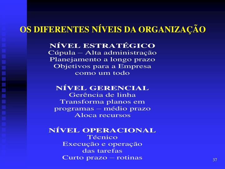 OS DIFERENTES NÍVEIS DA ORGANIZAÇÃO