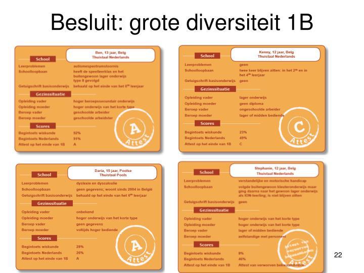 Besluit: grote diversiteit 1B
