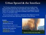 urban sprawl the interface