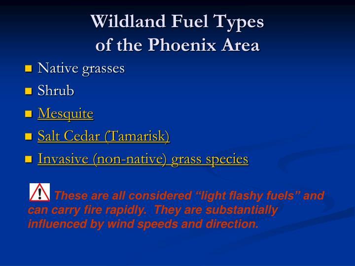 Wildland Fuel Types