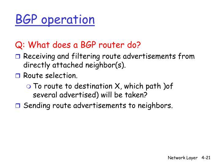 BGP operation