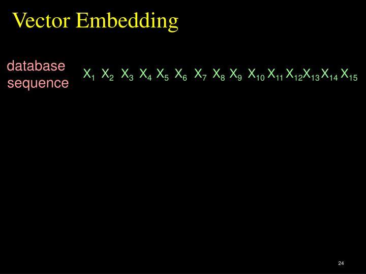 Vector Embedding