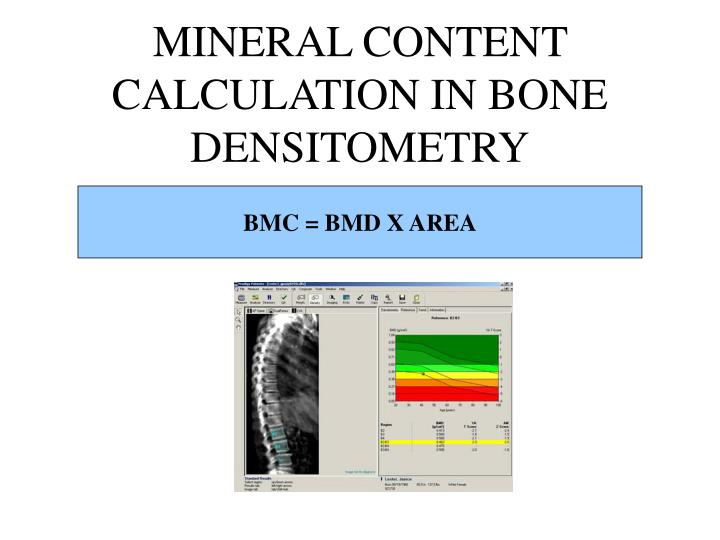 MINERAL CONTENT CALCULATION IN BONE DENSITOMETRY