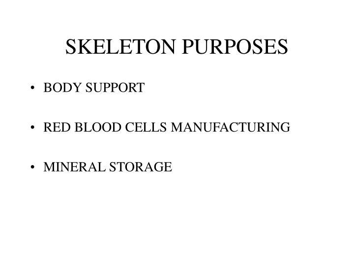 SKELETON PURPOSES