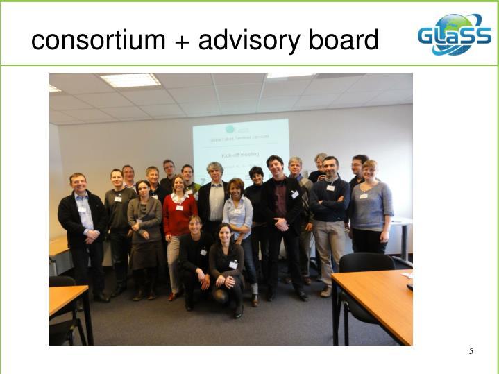 consortium + advisory board