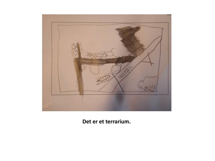 Det er et terrarium.