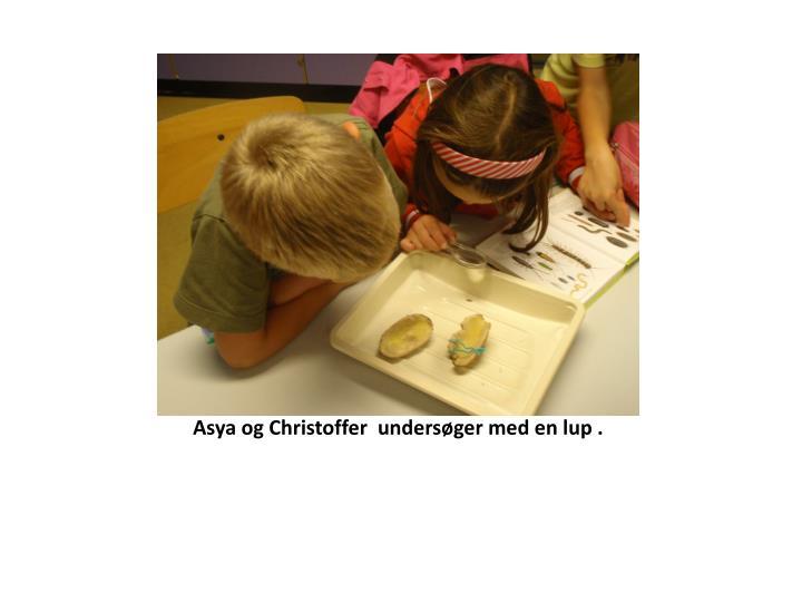 Asya og Christoffer  undersøger med en lup .