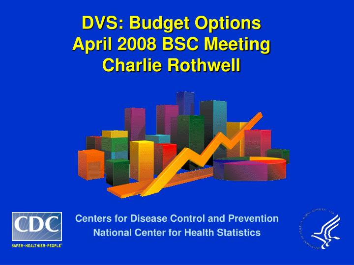 Dvs budget options april 2008 bsc meeting charlie rothwell