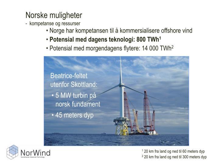 Norske muligheter