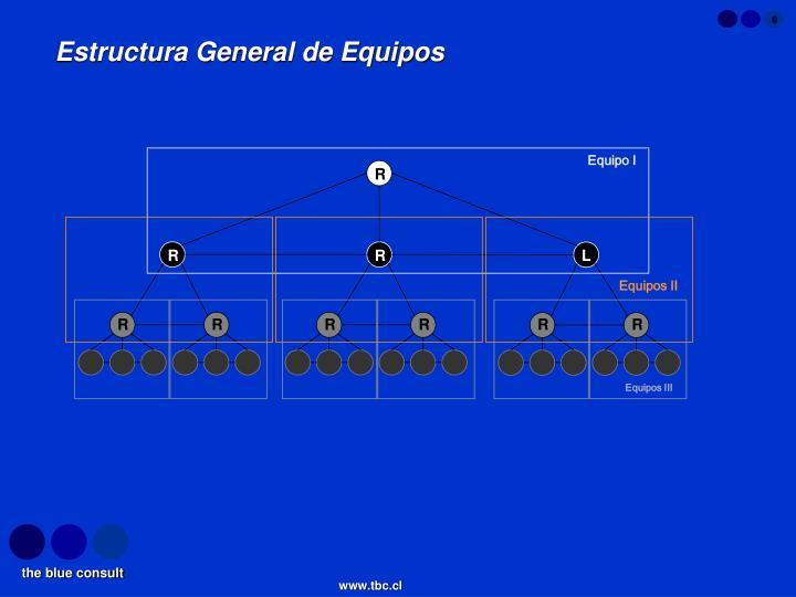 Estructura General de Equipos