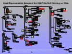 small representative sample of the snap dis reo ontology w cwa