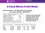 a fixed effects probit model