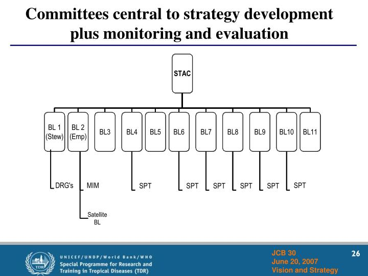 Committees central to strategy development plus monitoring and evaluation