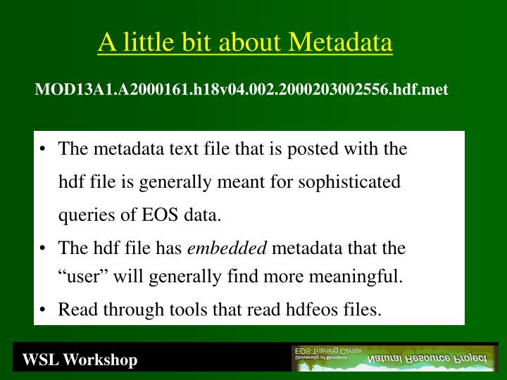 The metadata text file that is posted with the