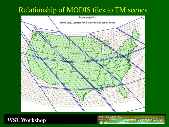 Relationship of MODIS tiles to TM scenes