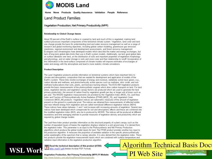 Algorithm Technical Basis Document