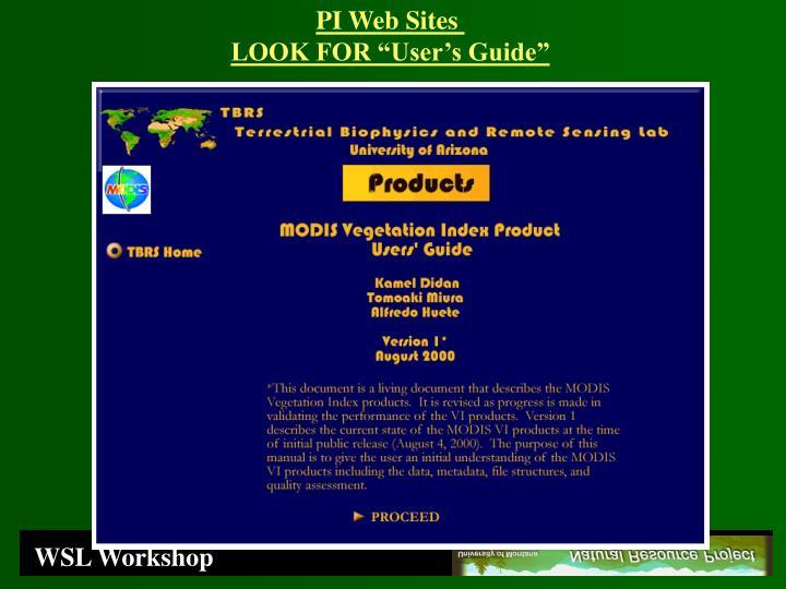 PI Web Sites