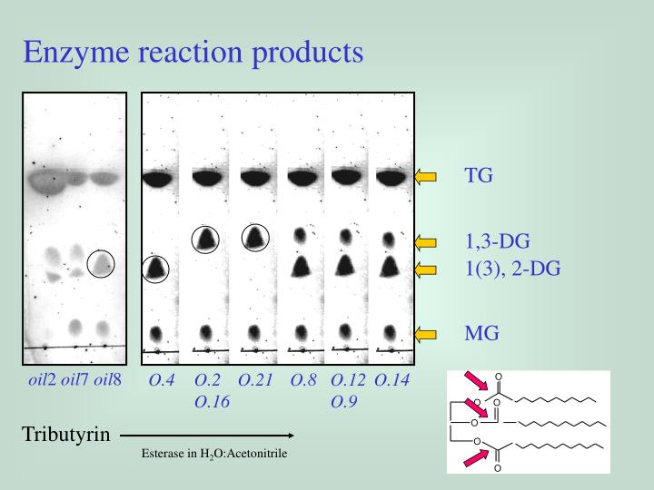 Enzyme reaction products
