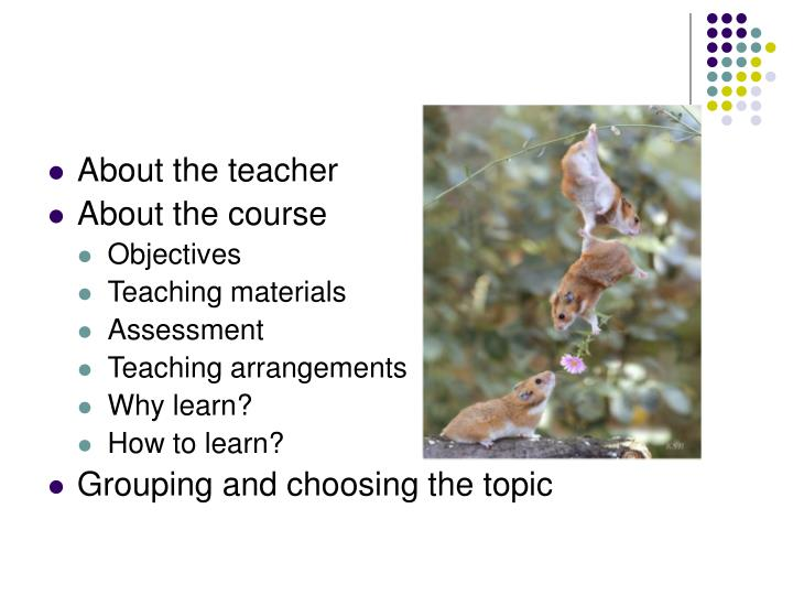 About the teacher