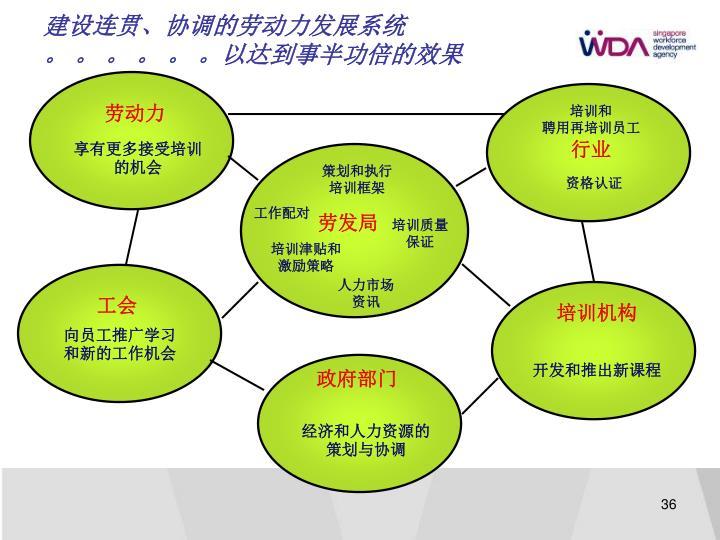 建设连贯、协调的劳动力发展系统